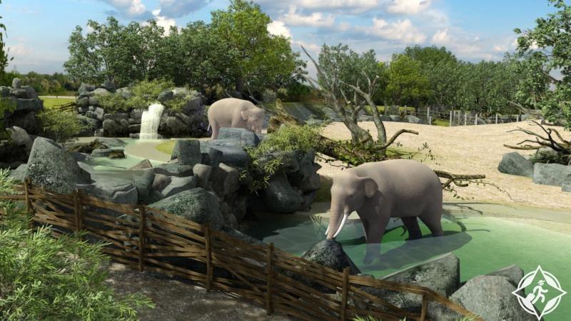 حديقة حيوان براغ