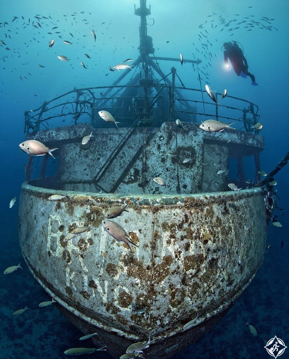 سفينة برينا H