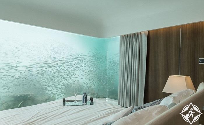 فرس البحر العائم1