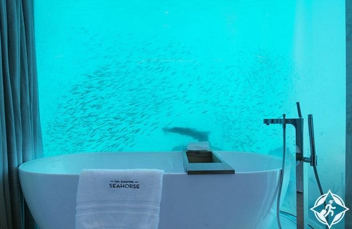 فرس البحر العائم2
