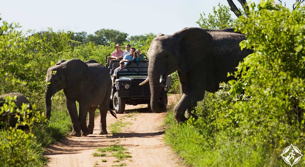 نصائح السلامة عند السفر إلى جنوب أفريقيا