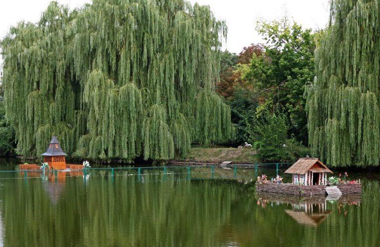 أوكرانيا-مايرهورد-نهر كورول-أجمل مناطق أوكرانيا
