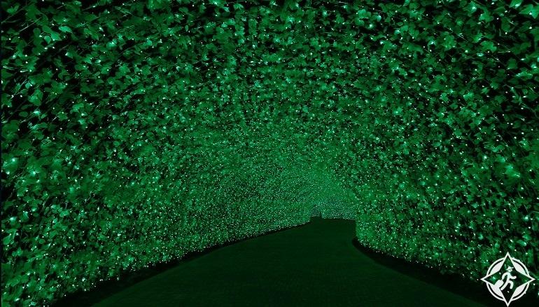 اليابان-منتجع ناجاشيما-نفق الأضواء-مهرجان نابانا نو ساتو