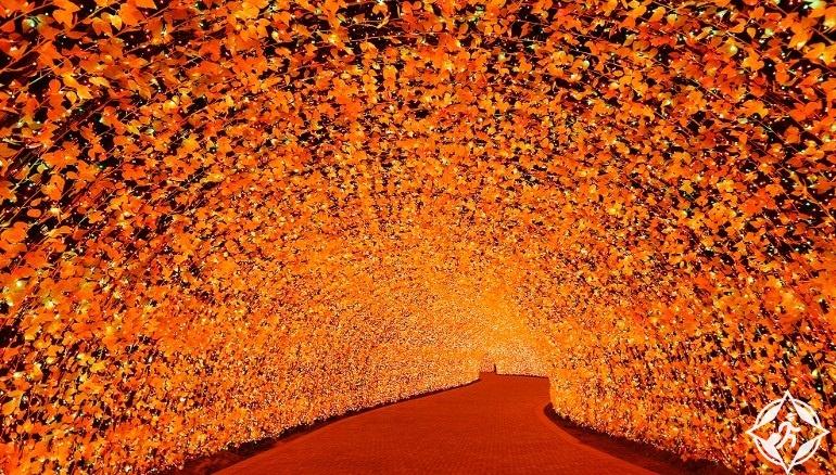 اليابان-منتجع ناجاشيما-نفق الخريف-مهرجان نابانا نو ساتو