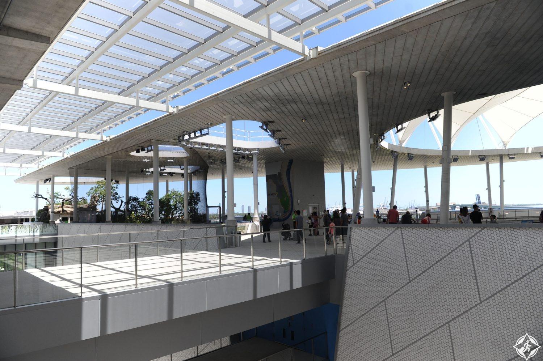 متحف فيليب وباتريشيا فروست للعلوم 3