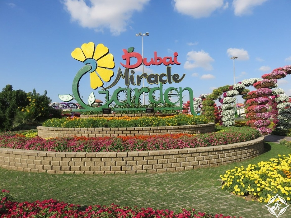 حديقة الزهور في دبي 1