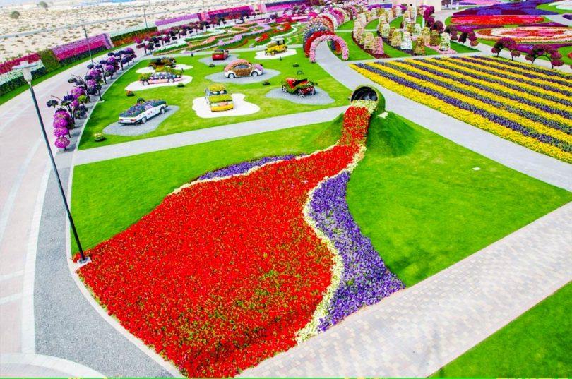 حديقة الزهور في دبي 14
