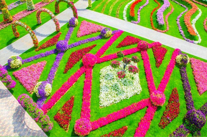 حديقة الزهور في دبي 17