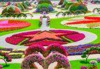 حديقة الزهور في دبي 19