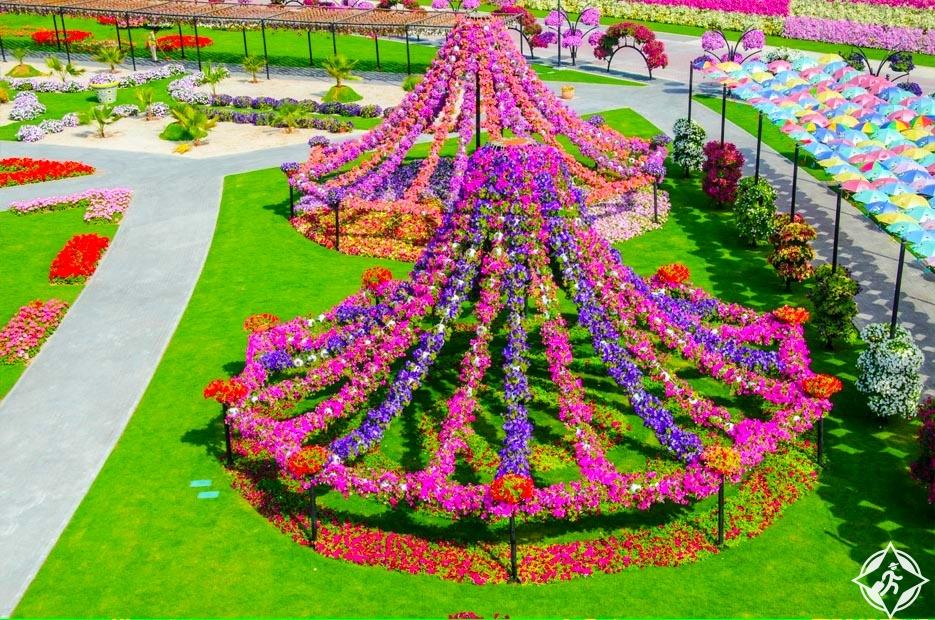 حديقة الزهور في دبي 6