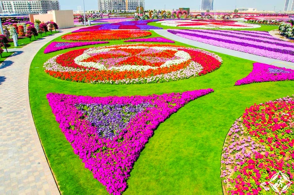 حديقة الزهور في دبي 8