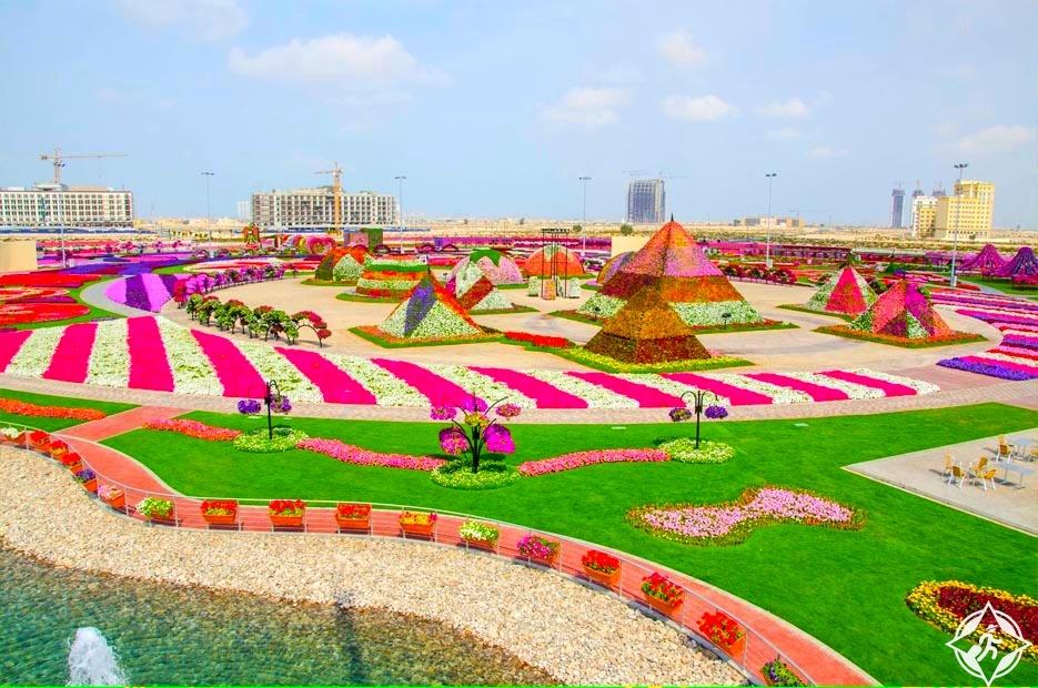 شاهد.. حديقة الزهور في دبي في 20 صورة مذهلة