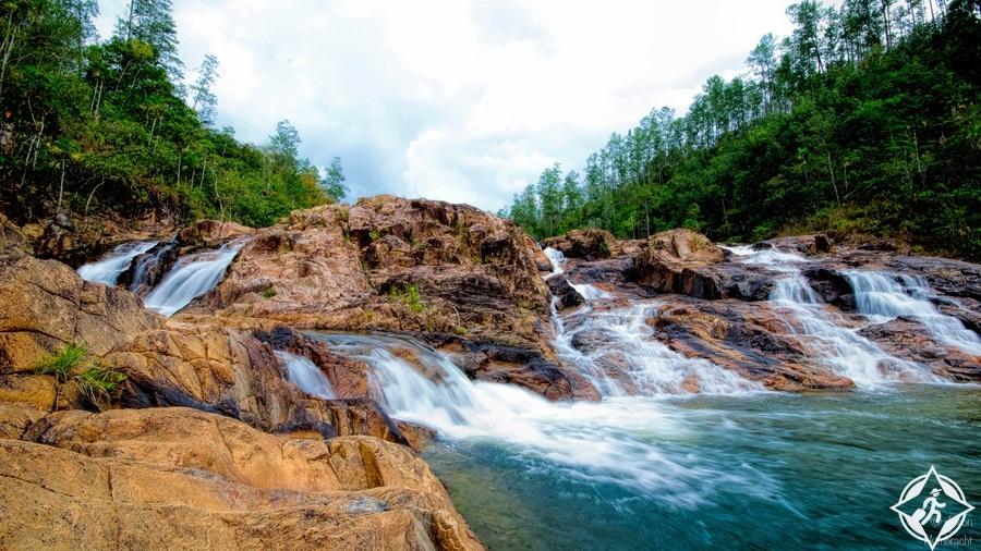 السياحة في بليز - محمية الغابات الجبلية بين ريدج