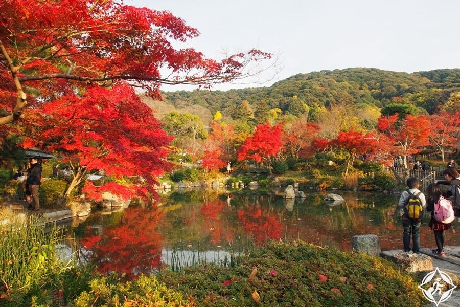 المعالم السياحية في سابورو - حديقة ماروياما-كوين