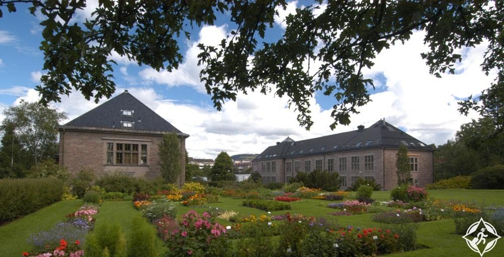 المعالم السياحية في أوسلو - متحف التاريخ الطبيعي