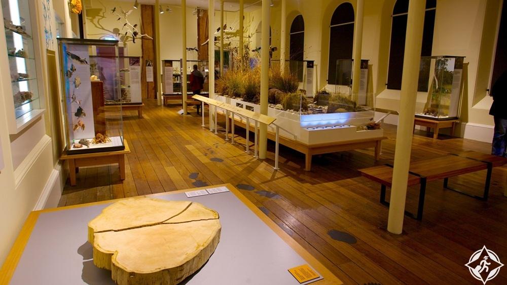 معالم الجذب في هوبارت - متحف تاسمانيان
