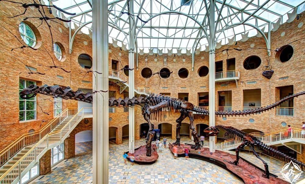 جورجيا-أتلانتا-متحف فيرنبانك للتاريخ الطبيعي