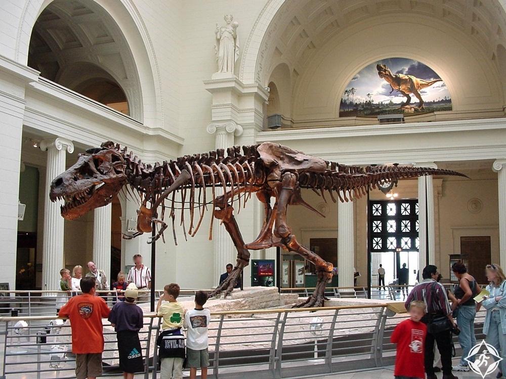 شيكاغو - متحف التاريخ الطبيعي