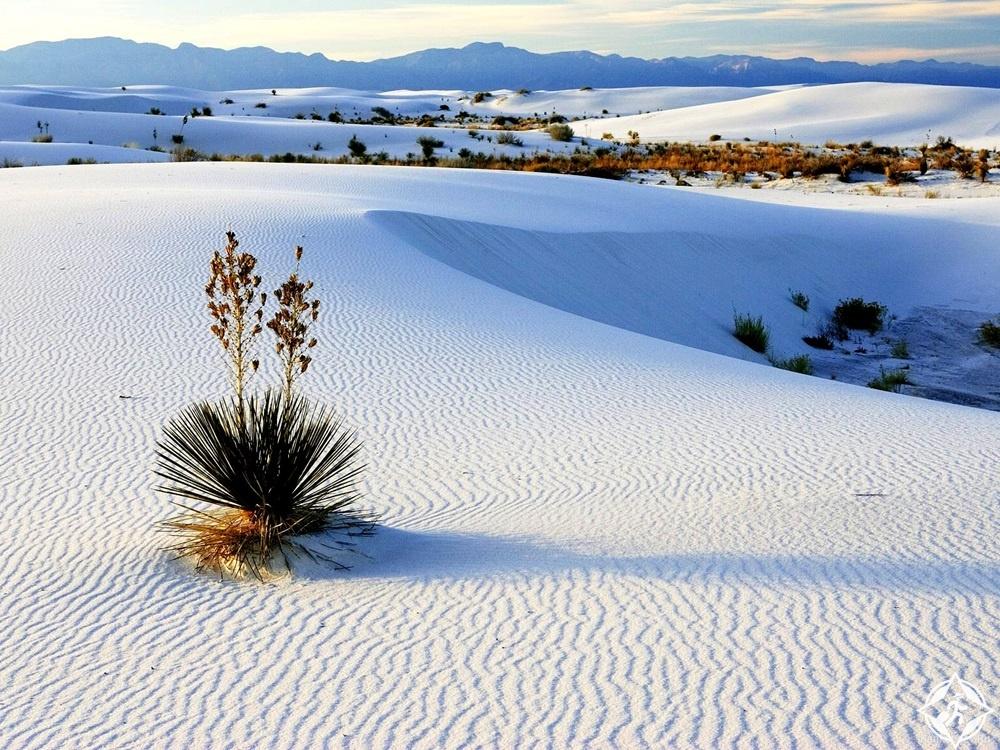 نيو مكسيكو - نصب الرمال البيضاء الوطني