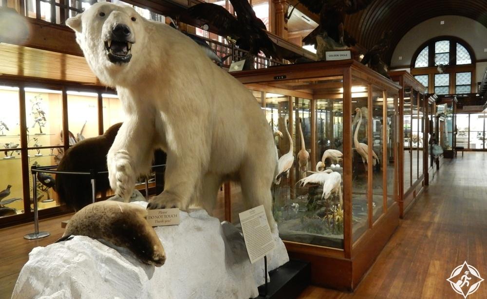 فيرمونت - متحف فيربانكس