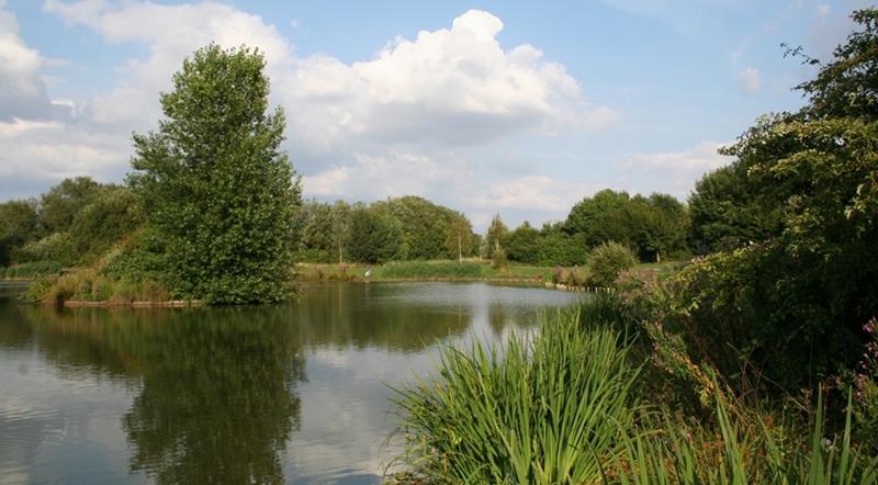 سويندون - حديقة مولدن هيل الريفية