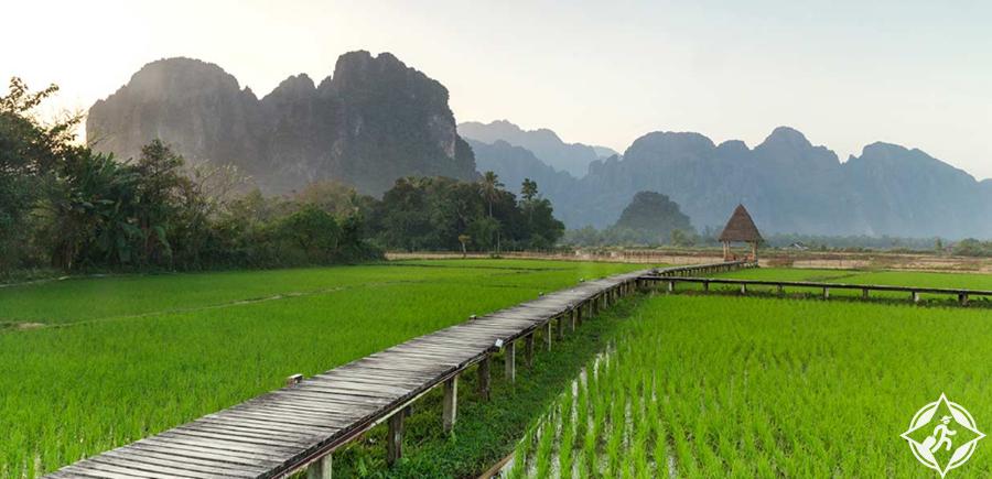 لوانغ برابانغ - حقول الأرز