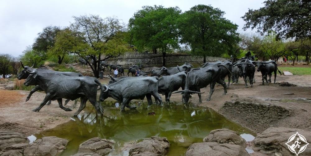دالاس - منحوتات الماشية المتحركة