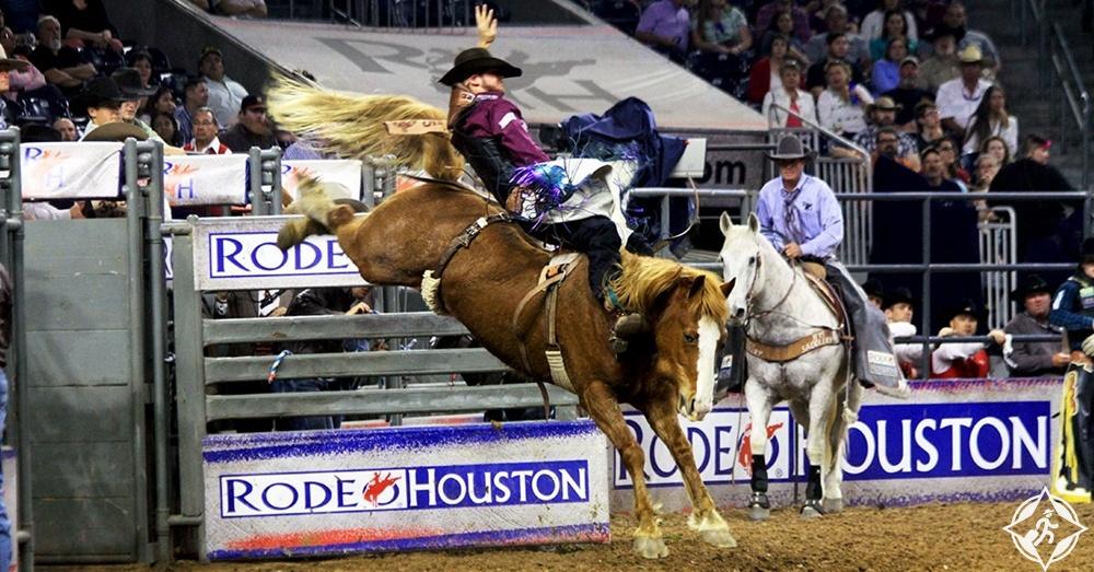 هيوستن - عرض الماشية ومسابقة رعاة البقر