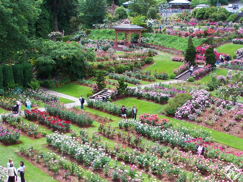 بورتلاند - حديقة اختبار الزهور الدولية