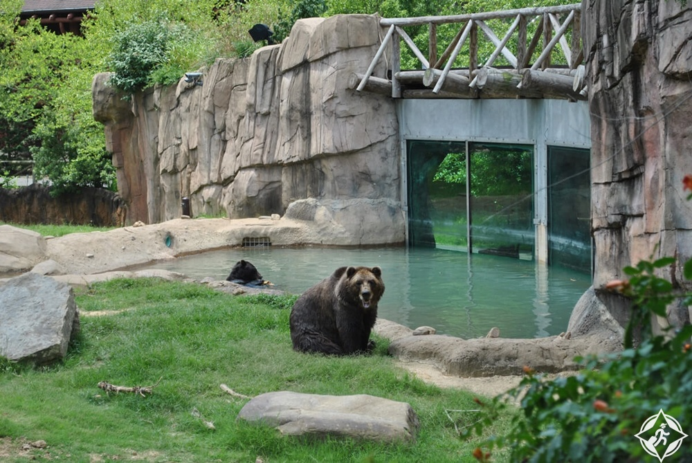 ممفيس - حديقة حيوان ممفيس
