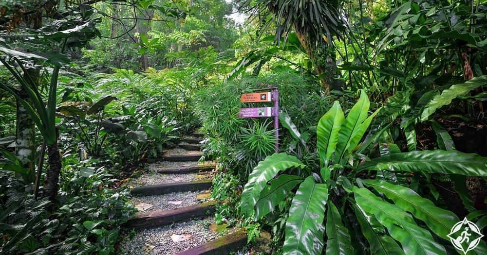 بينانج - حديقة التوابل الاستوائية