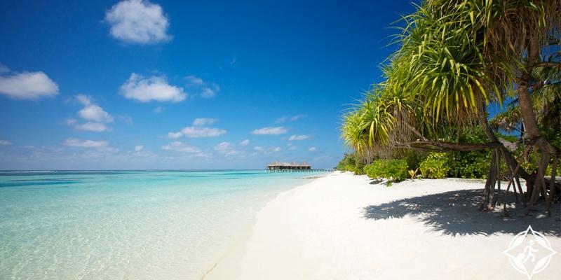 جزر المالديف مع الأطفال